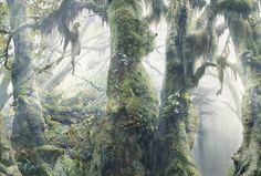 WWF-Botanimal-5-600x405.jpg (600×405)