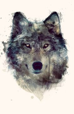 Watercolor wolf art