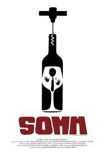 Somm (2012): About the Master Sommelier exam, one of the few really hard exams out there... This one gets a documentary because it is about wine :-)