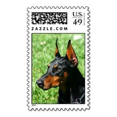 Doberman Pinscher postage so please read the important details before your purchasing anyway here is the best buyDeals          Doberman Pinscher postage Online Secure Check out Quick and Easy...
