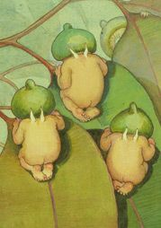 """May Gibbs is one of Australia's best loved classic children's book writers and artists of the classic """"snugglepot"""" and """"cuddlepie"""" characters"""