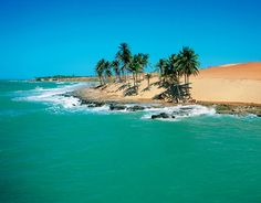Playa Lagoinha | Ins