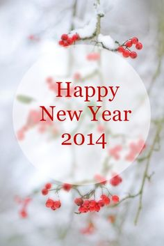 #2014, che sia un anno intrigante!