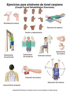 carpal tunnel exercises with pictures | Carpal Tunnel Syndrome Exercises: Illustration