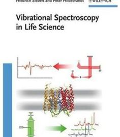 Human physiology an integrated approach 6th edition pdf download vibrational spectroscopy in life science pdf fandeluxe Images