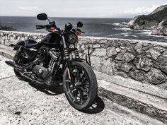 https://flic.kr/p/YByyTY | ..miranda.. | HD Sportster Iron 883....