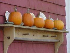 Outdoors.  White plates, small pumpkins, random rocks on a wooden shelf