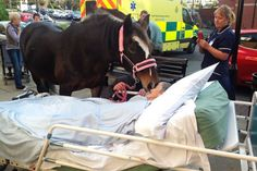 Dying patient's last wish comes true as she's reunited with her beloved horse for final time.