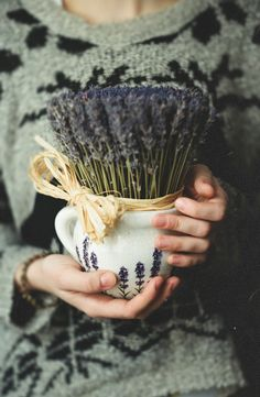 Lavender one of most ancient healing remedies