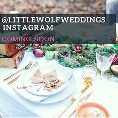 Our LittleWolf staff delivers the highest quality catering in Auckland. We deliver fresh, home-made finger food & buffet-style catering for parties, weddings & corporate events. Food Buffet, Party Catering, Styling A Buffet, Event Planning Tips, Catering Companies, Auckland, Corporate Events, Finger Foods, Table Settings