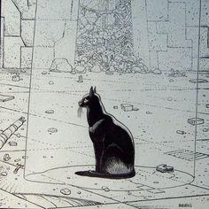 Moebius- Le chat