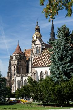 Elizabeth Cathedral in Kosice, Slovakia. It's such a gorgeous view of Kosice at the top Amazing Places On Earth, Places Around The World, Beautiful Places, Around The Worlds, Bratislava, Heart Of Europe, Cathedral Church, Central Europe, Place Of Worship