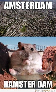 One of the funniest jokes with Amsterdam. A hamster photoshopped in front of a dam with captions Hamsterdam. More funny pictures at Crazy Hyena.