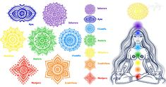 There are 7 chakras total. Each chakra is represented by a specific color, shape, name, and location in the body. Learn all about the chakra system here. 7 Chakras, Sept Chakras, Chakra Meditation, Chakra Healing, Chakra Art, Ayurveda, Chakra Symbole, Anahata Chakra, Plexus Solaire