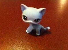 Littlest Pet Shop~#138 Gray White SHORT HAIR Cat ~ Brown Eyes ~ Monopoly Little Pet Shop, Little Pets, Brown Eyes, Brown Cat, Lps Cats, Short Hair Cats, Monopoly, White Shorts, Short Hair Styles