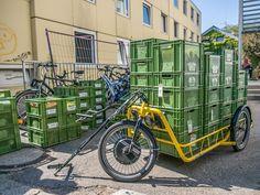 Carla_Cargo_Gemüsetransport