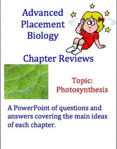 Sepup activity 12 photosynthesis and cellular respiration sepup advanced placement ap biology review powerpoint photosynthesis fandeluxe Gallery