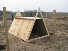 From raising goats, I know how to keep them happy. It starts by giving them a perfect shelter and we have suggestions for inspiring goat sheds just for you.