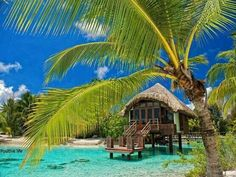 I cant get enough of Bora Bora !!.