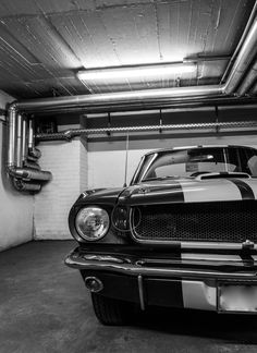 Ford Mustang GT350 Shelby I