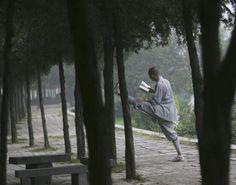Warrior Monks of Shaolin: Shaolin Monks: A Multitasking Monk