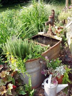 cat s garden the whimsical gardener pond water features