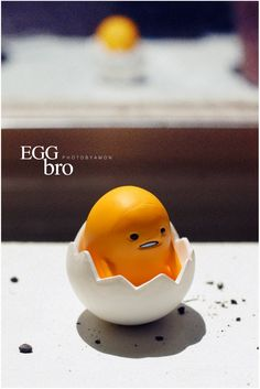 egg / photobyamon