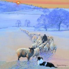 "Border Collie and Sheep ""Winter's Eve"" Festive Christmas Card Pack by Pollyanna Pickering (10 Card Pack): Amazon.co.uk: Kitchen & Home"