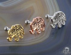 Bindi Elephant Barbell Tragus Jewelry, Bindi, Barbell, Gauges, Elephants, Belly Button Rings, Body Art, Piercings, Inspire