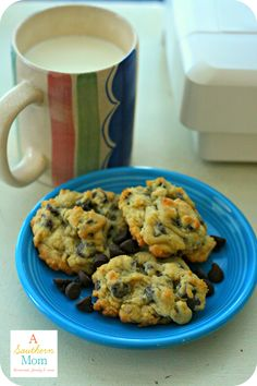 Ooey Gooey and chocolatey. All things that make cookies wonderful. This is the chocolate chip recipe your grandkids will be begging for!