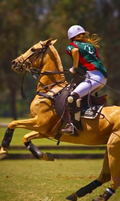 Joel Baker had a polo field on the mesa above the Santa Ynez Valley. Did some events at the Santa Barbara Polo Fields for Parties a la Carte. Horse Girl, Horse Love, Palomino, Hv Polo, Polo Horse, Sport Of Kings, Cow Boys, Equestrian Style, Equestrian Clothes