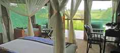 #safari #botswana #okavango-delta #duba-plains #travel #honeymoon