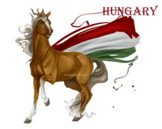 Horse Hetalia: Hungary by MUSONART