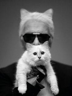 Karl Lagerfeld & Choupette voor Harper's Bazaar - foto: Karl Lagerfeld