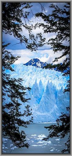 Los Glaciares National Park, Santa Cruz , Argentinean Patagonia, ARGENTINA -- The Perito Moreno Glacier slowly makes its way down to the lower ground of Argentino Lake. At its end the Perito Moreno Glacier has an average thickness of 170m (558ft) with 74m (240ft) visible above the water line of the lake. With over 250 km2 (97 sq mi) of ice the glacier spans 30 km (19 mi) in length and a width of 5km at its terminus #by robert downie on flickr.com