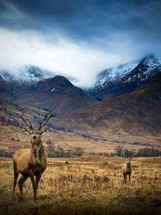 Glen Etive, Highlands of Scotland