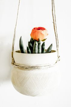 Luved by Alexandra Evjen: Beautiful pottery and plants make me happy