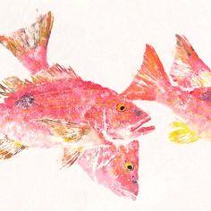 """Lane Snapper - """"In the Pink"""" - Gyotaku Fish Rubbing"""