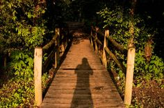 Hiwassee/Ocoee State Park, TN