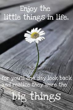 """Enjoy the little things in life for you'll one day look back and realize they were the big things."" ~ Robert Brault"