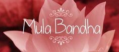 Mula Bandha è il bandha più semplice da spiegare i muscoli del pavimento pelvico si contraggono leggermente.