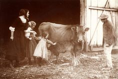 German Immigrants in the Midwest - Ancestry Insights