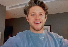 Niall Horan Baby, One Direction Pictures, James Horan, 1d And 5sos, Memes, Photoshop, 1direction, Zayn, Headers