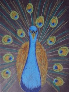 Peacock in pastels on black paper