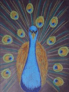 Teken op een zwart A3 papier met wit potlood de contouren van een pauw. Kleur het lijfje in met pastelkrijt. Als het lijfje klaar is, kun je de veren gaan tekenen. Teken eerst de ogen in de veren en kleur deze in. Als laatst trek je met verschillende kleuren de strepen van de veren.