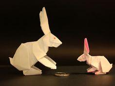 Como Hacer un conejo de Origami: Origami Brasil