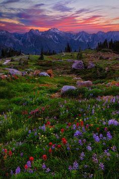 Miles Morgan Landscape Photography - Alpine Environments