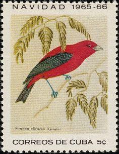 Scarlet Tanager Piranga olivacea | Cuba Stamp