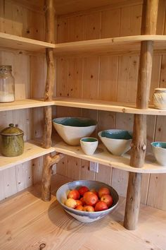 Tree limbs support kitchen shelving. Hornby Island Caravans
