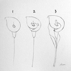✔ Drawing Flowers Step By Step Sketches Easy Flower Drawings, Flower Drawing Tutorials, Flower Sketches, Pencil Art Drawings, Art Drawings Sketches, Doodle Drawings, Easy Drawings, Art Tutorials, Pencil Sketching